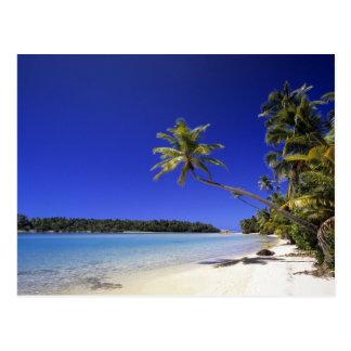 Palm lined beach Cook Islands 5 Postcard