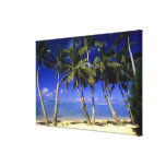 Palm lined beach Cook Islands 6 Canvas Print