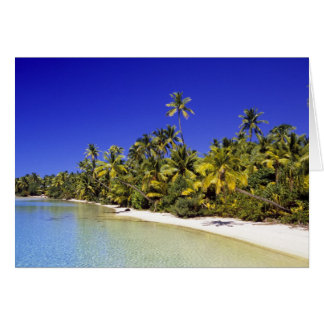 Palm lined beach Cook Islands 6 Card