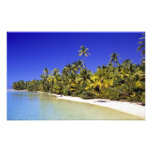 Palm lined beach Cook Islands 6 Photographic Print