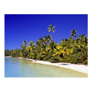 Palm lined beach Cook Islands 6 Postcard