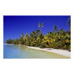 Palm lined beach Cook Islands 6 Poster