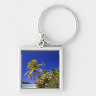 Palm lined beach Cook Islands 7 Keychain