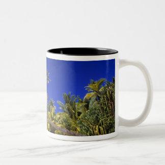 Palm lined beach Cook Islands 7 Two-Tone Coffee Mug