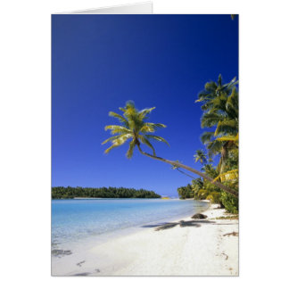 Palm lined beach Cook Islands Card