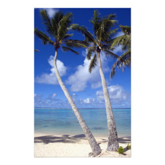 Palm lined beach Cook Islands Photo Print