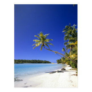 Palm lined beach Cook Islands Post Cards