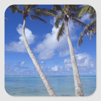 Palm lined beach Cook Islands Square Sticker