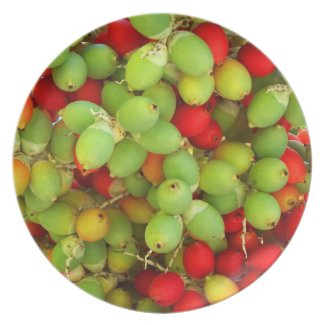 palm nuts green and red. party plates