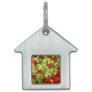 palm nuts green and red. pet tags