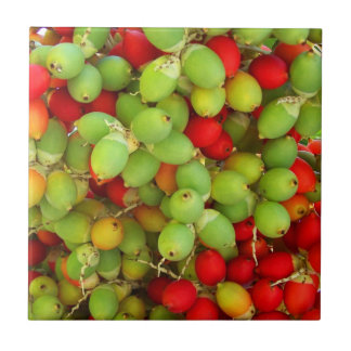 palm nuts green and red. small square tile