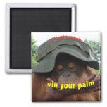 Palm Oil Orangutan Conservation Fridge Magnet
