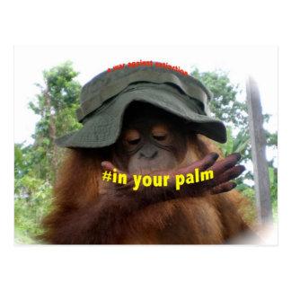 Palm Oil Orangutan Conservation Postcard