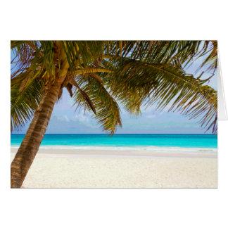 Palm Paradise Blue Sky Sunshine Card