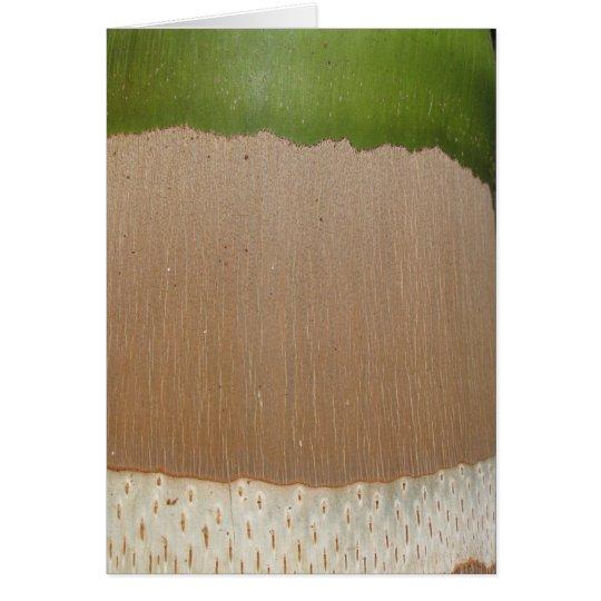 Palm Pattern Card
