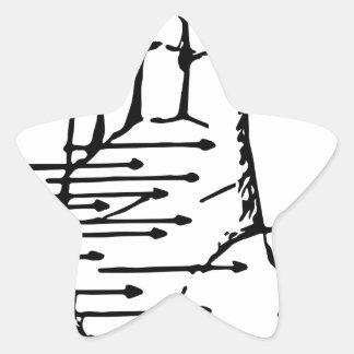 palm reader star sticker
