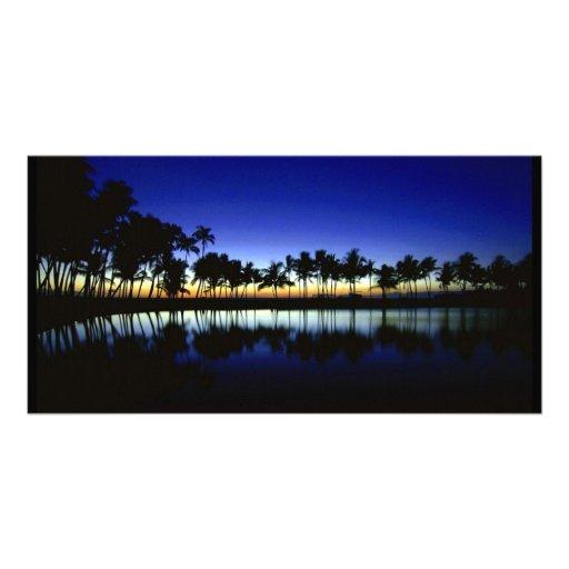 palm_silhouette_big_island_hawaii photo greeting card