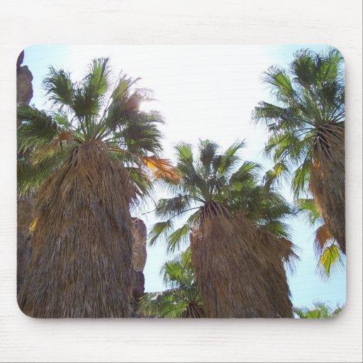 Palm Spring 1 Tapete De Ratón