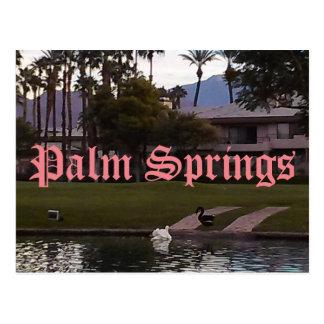 Palm Springs California Postcard