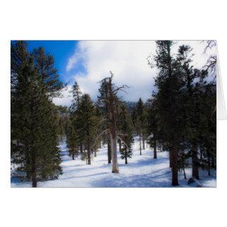 Palm Springs Card