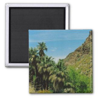 Palm Springs Imán Para Frigorifico