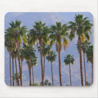 Palm Springs Mousepad de California del desierto d Tapetes De Raton