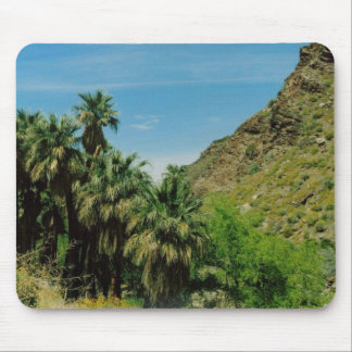Palm Springs Scene Mouse Pad