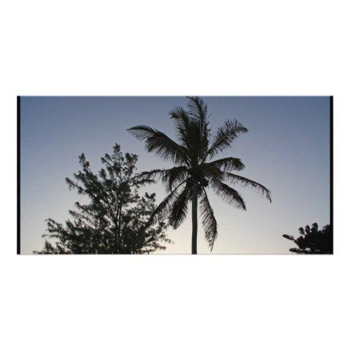 Palm Sunset Customized Photo Card