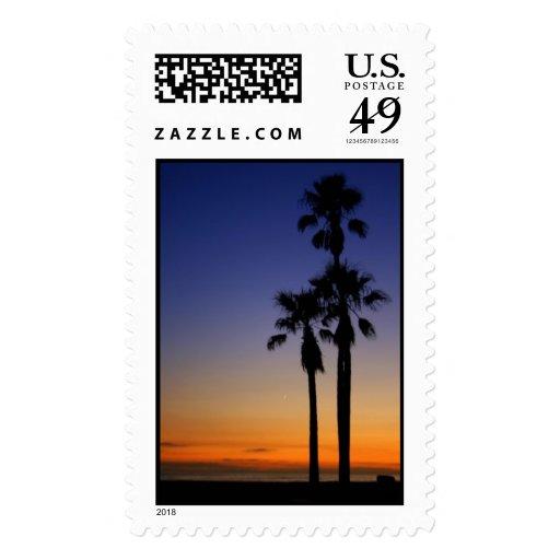 Palm Sunset Postage Stamp