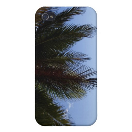 Palm tree along Caribbean Sea. iPhone 4/4S Covers