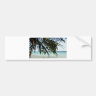 palm tree and beach bumper sticker