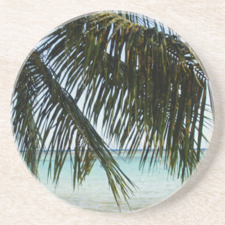 palm tree and beach coaster