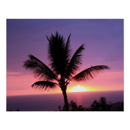 Palm Tree and Colorful Sunset Sky Poster