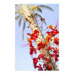 Palm Tree and Red Flower Stationery Design