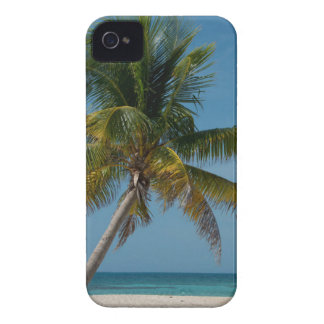 Palm tree and white sand beach  2 Case-Mate iPhone 4 case