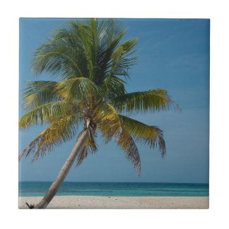 Palm tree and white sand beach  2 ceramic tile