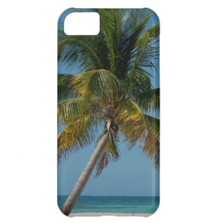 Palm tree and white sand beach  2 iPhone 5C case