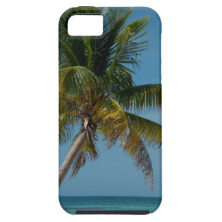 Palm tree and white sand beach  2 iPhone SE/5/5s case