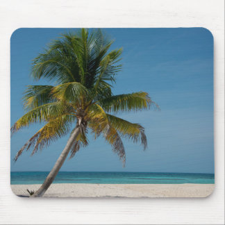 Palm tree and white sand beach  2 mouse pad