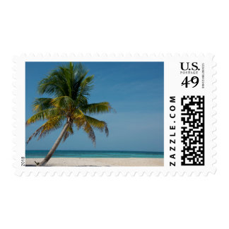 Palm tree and white sand beach  2 postage stamp