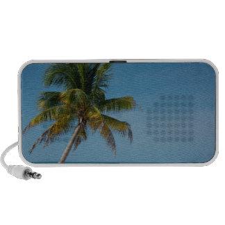 Palm tree and white sand beach  2 notebook speaker