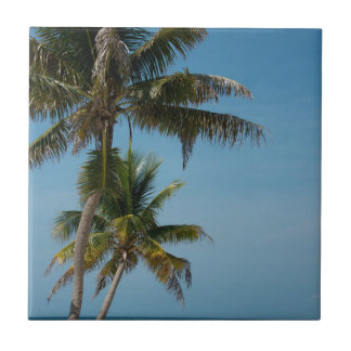 Palm tree and white sand beach ceramic tile