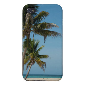 Palm tree and white sand beach iPhone 4/4S case
