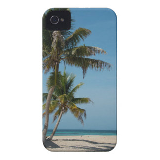 Palm tree and white sand beach iPhone 4 case
