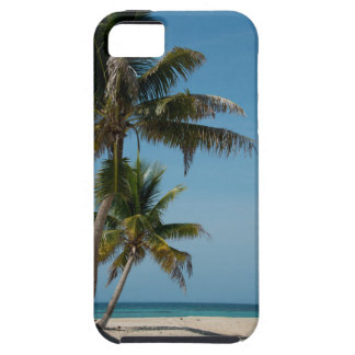 Palm tree and white sand beach iPhone SE/5/5s case