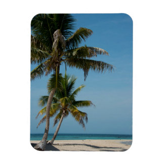 Palm tree and white sand beach magnet