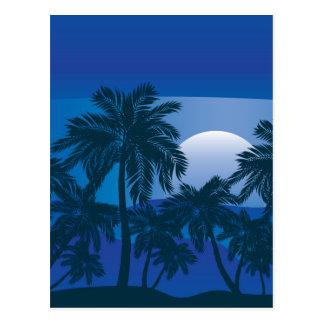 Palm Tree at Night 2 Postcard