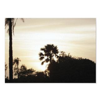 Palm tree at sunset card