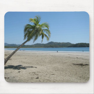 Palm Tree at the Beach Mouse Pad