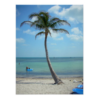 Palm Tree at the Beach Posters